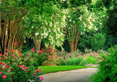 Gibbs Gardens--nature's magical place--where roses reign all summer