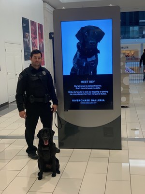 Protecting Public Spaces from Active Shooters with Canine Detection