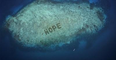 SHEBA® revela Hope Reef: se anuncia el programa de restauración de corales más grande del mundo