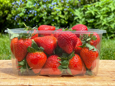 Waddington Europe and Produce Packaging Start the Switch to 100% rPET Containers for the Soft Fruit Season