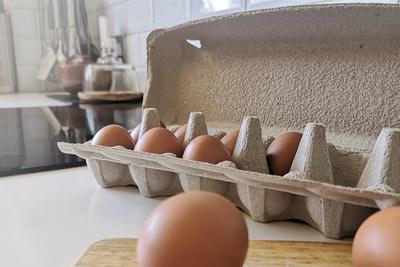 Huhtamaki Introduces 100% Plastic Free Egg Carton, Smilepack, In The U.S. And Brazil