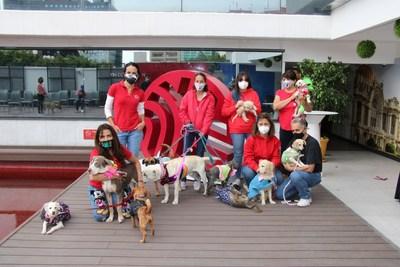 Empresas impulsan responsabilidad en mascotas; by Juan Carlos Machorro